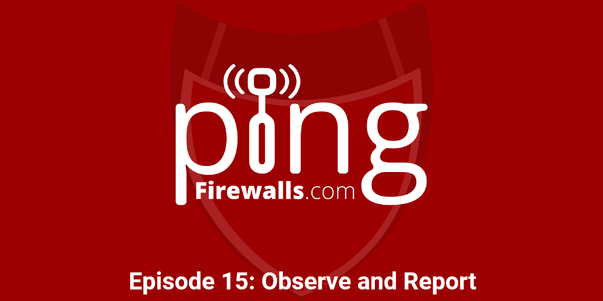 Observe and Report – Ping Podcast – Episode 15
